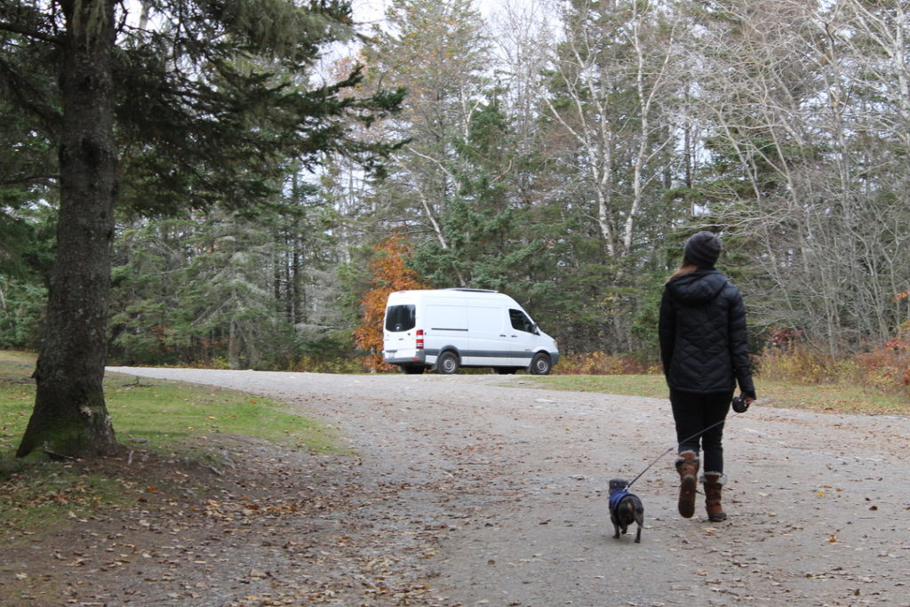 Woman with dachshund: Anxiety in Van life