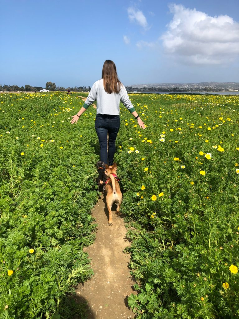 Top off-leash dog park San Diego: woman in field with dog