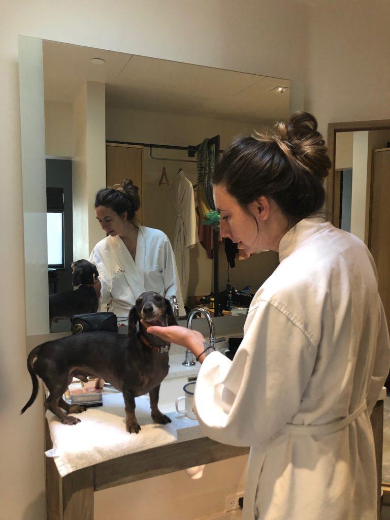 Dog friendly Hotels in Scottsdale