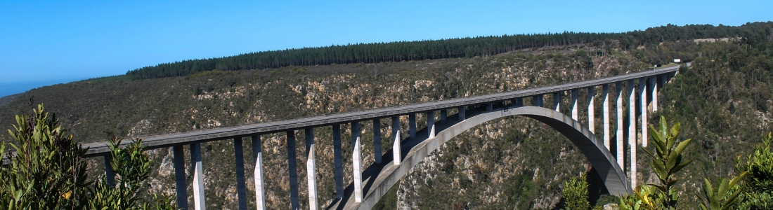 Jumping off of Bloukrans Bridge